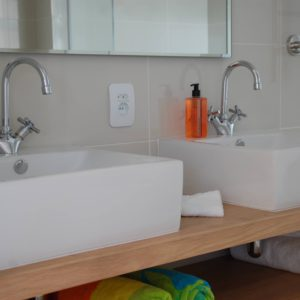Luxury Twin Basins