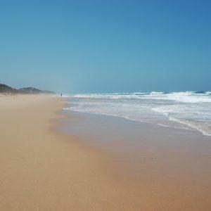 Wilderness Beach Walks